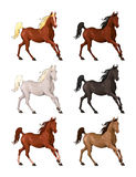Horses in different colors. Royalty Free Stock Photos