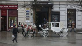 Horses drawn carriage stock video footage