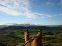 Through the Horses Ears Horse Riding in Cumbria Stock Photography