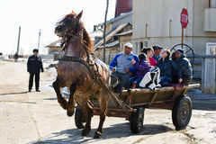 Horses Easter(Pastele Cailor) Festival Stock Images