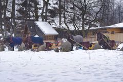 Horses are fed oats and hay before setting out on sleigh rides royalty free stock photos