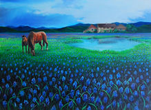 Horses in the field. Original oil paint of two horses in a flowered field, near a cottage and hills royalty free illustration