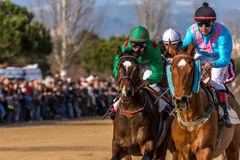 Horses on the finnish line. Thoroughbred horses on the finish line. Competition horse races stock image