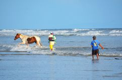 Horses and fishermen, Playa El Espino Stock Photography