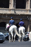 Horses in front of Colosseum Stock Photography