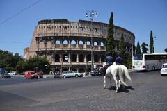 Horses in front of leaning Colosseum Royalty Free Stock Photo
