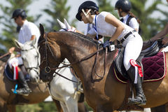 Horses getting ready in line for the competition matches riding Royalty Free Stock Image