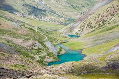 Horses going along turquoise mountain lake Stock Photo