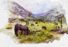 Horses graze in the valley between the mountains. Stylization under watercolor drawing royalty free illustration