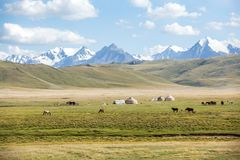Horses grazing in mountains near yurts Stock Photos