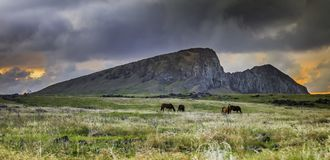 Horses Grazing Before Rano Raraku During Sunset royalty free stock photography