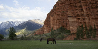 Horses grazing, red rocks in Djety Oguz, Kyrgyzstan Royalty Free Stock Images