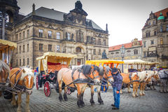 Horses harnessed to the carriage, Dresden, Germany Royalty Free Stock Image