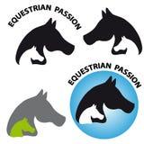 Horses head on white background Royalty Free Stock Image