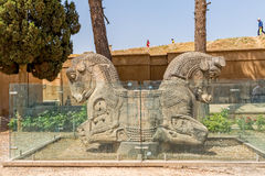 Horses heads Persepolis Stock Photography