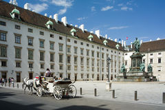 Horses in Hofburg Royalty Free Stock Images