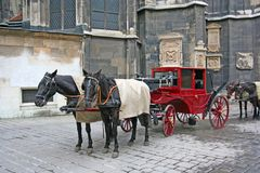 Horses and Horse Coach. A horse coach with the two horses that drag it (Vienna Royalty Free Stock Photography