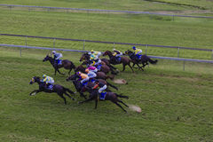 Horses Jockeys Racing Overlooking Stock Photo