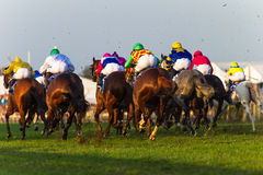 Horses Jockeys Racing Rear Action. Horses  and Jockeys at full stretch in the final 400meters of a race to the winning post at the Durban July event. Photo image Stock Photos