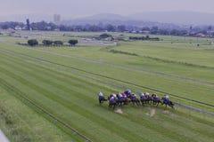Horses Jockeys Sprint Overhead  Stock Images