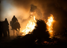 Horses jumping above the fire without fear Royalty Free Stock Images