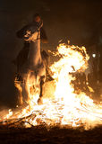 Horses jumping above the fire without fear Royalty Free Stock Photos