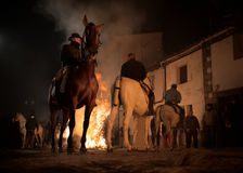 Horses jumping above the fire without fear Stock Photography