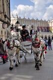 Horses Krakow Poland Royalty Free Stock Photos