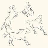 Horses line art Stock Image