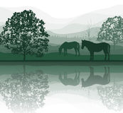 Horses on a Meadow with Trees and lake Royalty Free Stock Photos