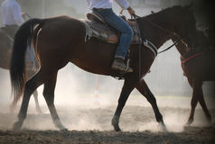 Horses and men in the dust Royalty Free Stock Photos