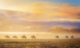 Horses in Mist, at Sunset, Oregon. Horseback riders escape to the beach in Bandon, Oregon, western United State, riding horses on the sand at water's edge at Royalty Free Stock Photo