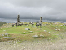 Horses on the moors of Dartmoor Stock Photography