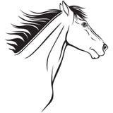 Horses muzzle profile Stock Photos