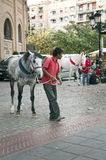 Horses near the square for bullfighting Royalty Free Stock Photo