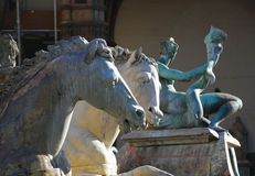 Horses from Neptune Statue, Florence 2. Two of the horses from the famous Neptune statue in Palazzo Vecchio, Florence, Italy Royalty Free Stock Image