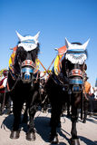 Horses at the Oktoberfest, Munich Royalty Free Stock Photo