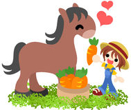Horses and People ~We love carrot!~ Royalty Free Stock Images