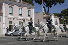 Horses and Presidential Palace Royalty Free Stock Photography