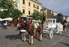Horses pulling carriage in Krakow old town Stock Images