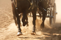 Horses Pulling Wagon. Horses pulling a wagon through a dusty field Stock Image