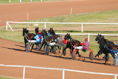 Horses race. Horse racing in France royalty free stock photo
