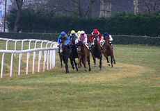 Horses racing. In France royalty free stock photos