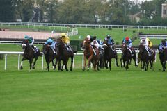 Horses racing. From Europe, France Royalty Free Stock Image