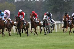 Horses racing. From France royalty free stock image