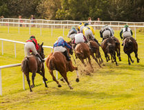Horses racing down the track Stock Images