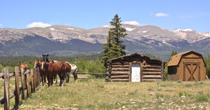 Horses on ranch. Horses in a corral with traditional log cabin and dutch barn on a Rocky Mountain ranch in Colorado, USA stock photos