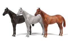 Horses. Realistic 3d render of horses Royalty Free Stock Image