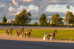 Horses and riders in  harness race Stock Images