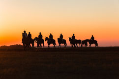 Horses Riders Silhouetted Dawn Royalty Free Stock Images